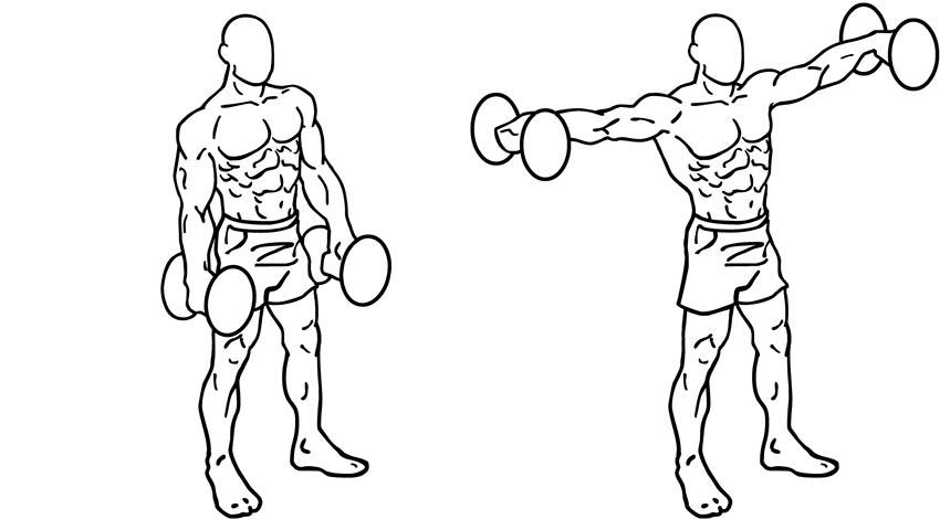 Elévations latérales, réalisation de l'exercice